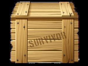 The Survivor Box